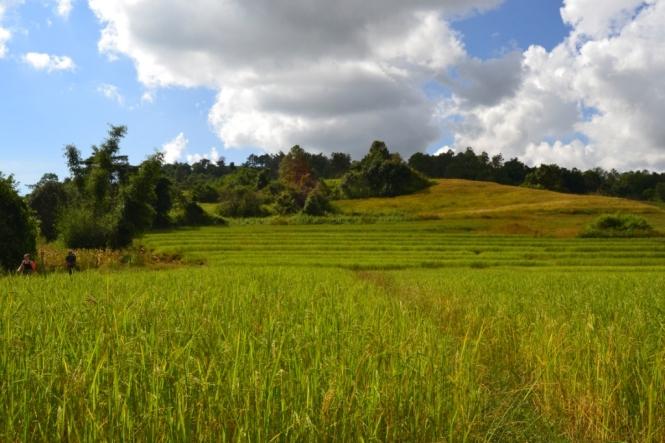 2019-10-myanmar-trekking-kalaw-inle-50