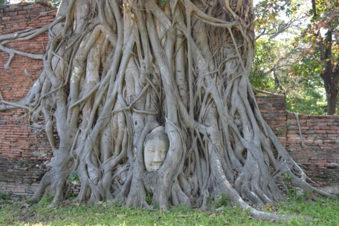 2019-10-tailandia-ayutthaya-wat-phra-mahathat-3