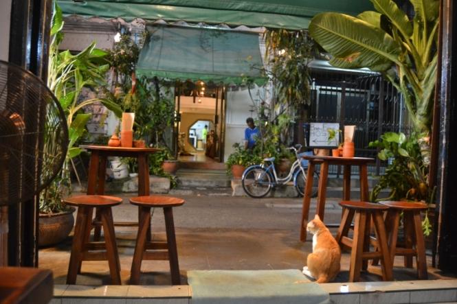 2019-10-tailandia-bangkok-banglamphu-born-free-cafe-2