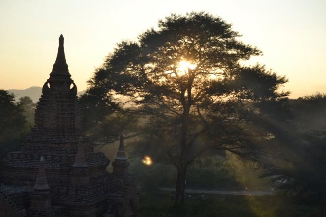2019-11-myanmar-bagan-ruinas-black-elephant-05
