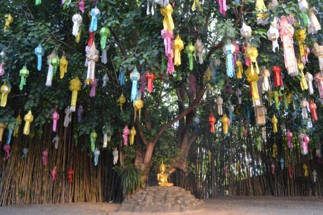 2019-11-tailandia-chiang-mai-wat-phan-tao-2
